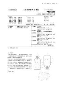 特許第6053604号資料
